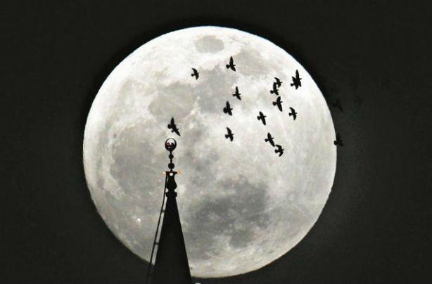 moon 003