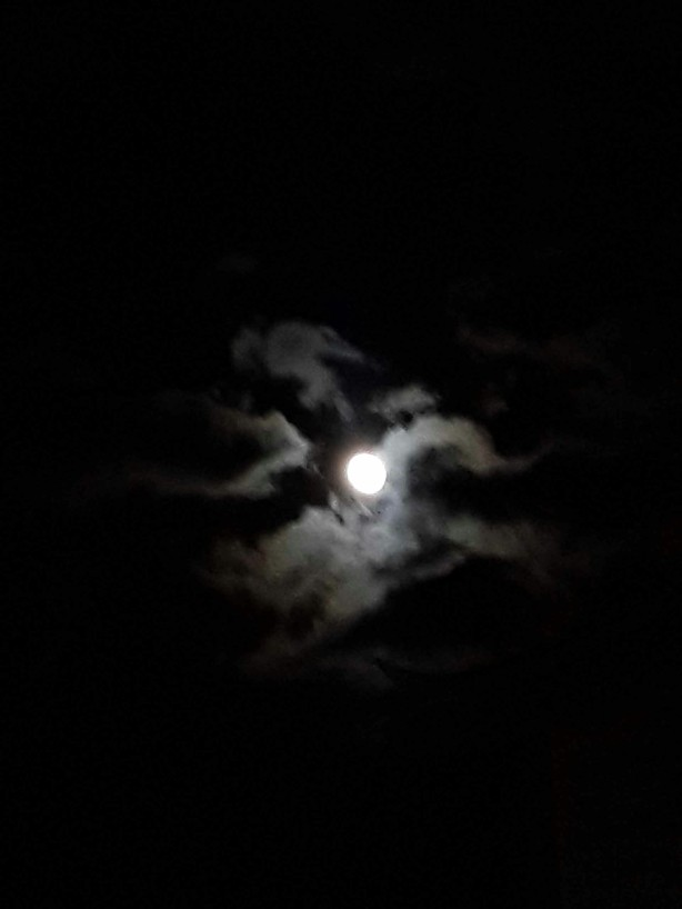 moon 5pic